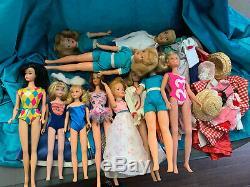 Vintage Large Lot Tammy, Midge, Skipper Barbie & Etc. (at least 2 Dolls TLC)